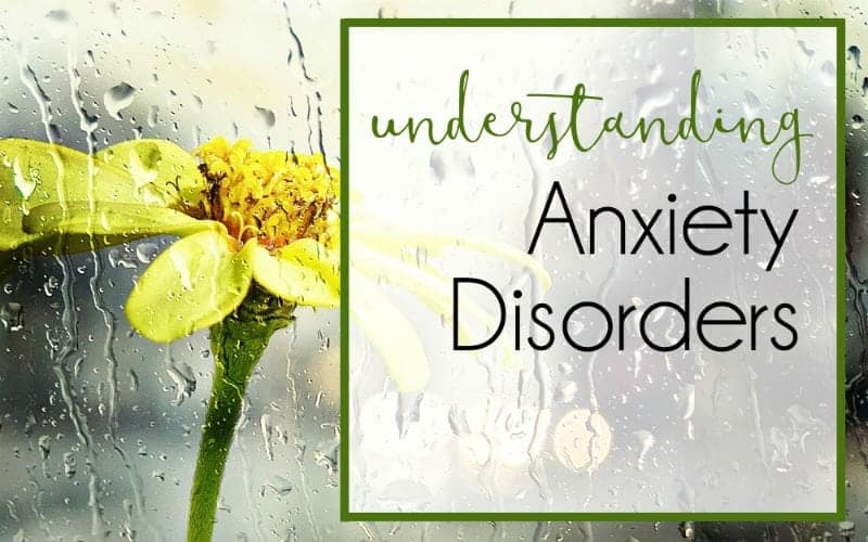 The Ultimate Guide to Living (Well) With Anxiety, Part 2 – Understanding Anxiety Disorders