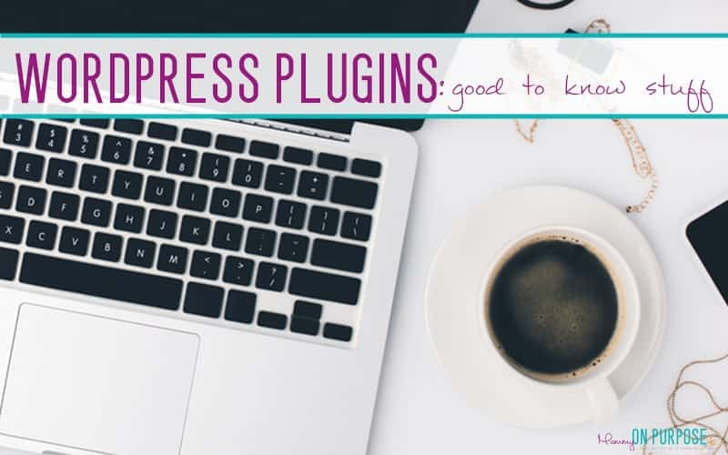 How to Install WordPress Plugins (& Warnings)