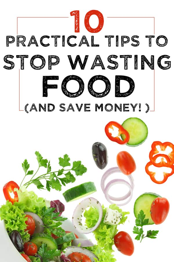 stop wasting food and save money