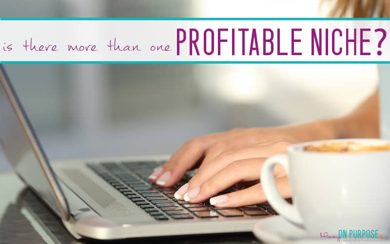 Can You REALLY Make Money Blogging (Without Blogging About Blogging?)