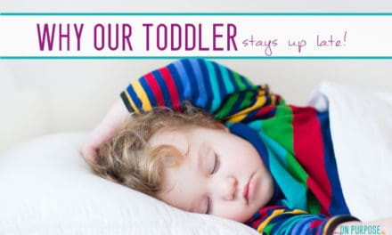 "Why Our Two Year Old Goes to Bed ""Late"""