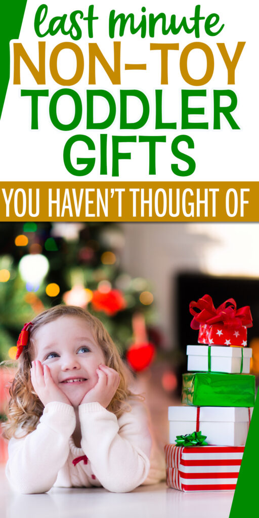 gifts for toddlers that aren't toys pinterest pin